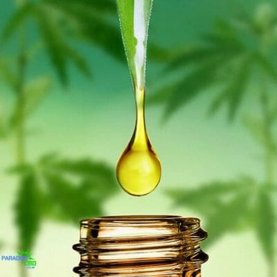 cbd oil blog