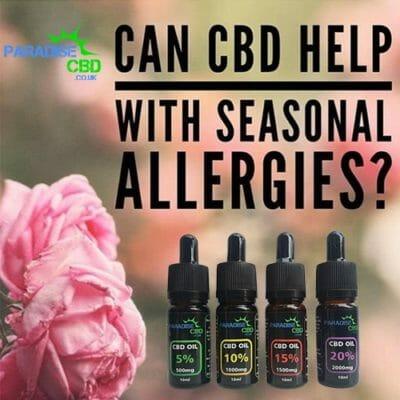 cbd allergies